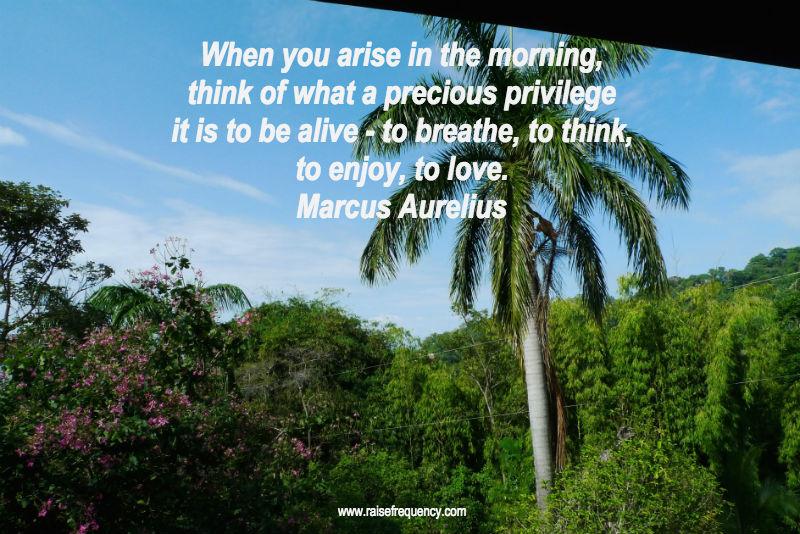 Privilege-to-be-alive-Marcus-Aurelius-quote.jpg