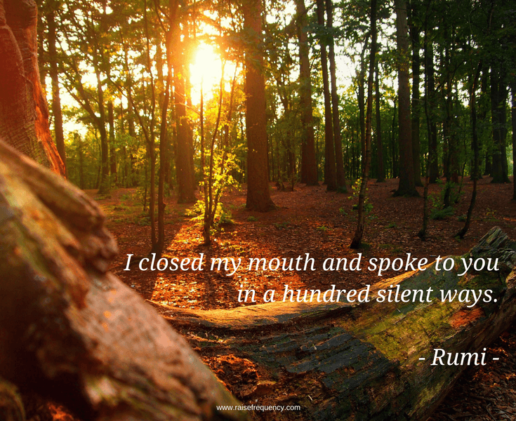 Hundred silent ways quote by Rumi