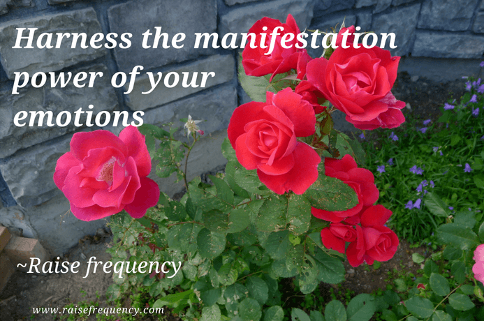 Harness the Power of your emotions quote - Empowering quotes for women