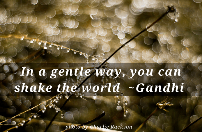 In a gentle way quote by Gandhi - Empowering quotes